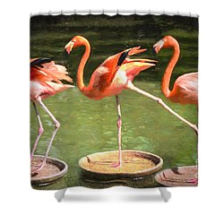 Three Flamingos Shower Curtain by Judy Wolinsky