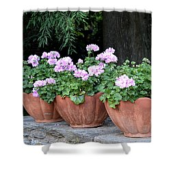 Three Flower Pots Shower Curtain by Deborah  Crew-Johnson