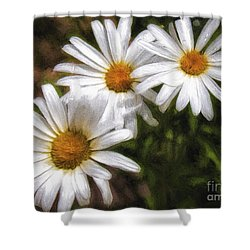 Shower Curtain featuring the photograph Three Flowers  ... by Chuck Caramella