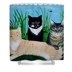 Three Furry Friends Shower Curtain