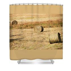 Three Hay Balls -  Shower Curtain