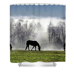 Three Horse Morning Shower Curtain