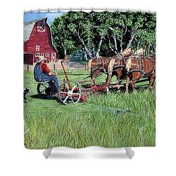 Three Horsepower Shower Curtain