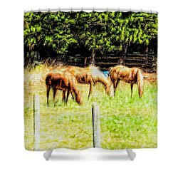 Three Horses On The Farm In Abstract 1 Shower Curtain