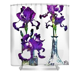 Three Irises In Vases Shower Curtain