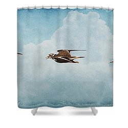 Three Killdeer Shower Curtain by Karen Slagle