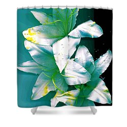 Shower Curtain featuring the photograph Three Lilies by Carolyn Repka