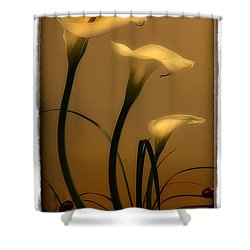 Three Lilies Shower Curtain by Linda Olsen