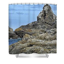 Shower Curtain featuring the photograph Three Little Birds by Peggy Hughes