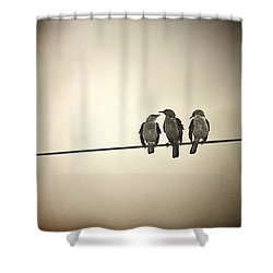 Three Little Birds Shower Curtain by Trish Mistric
