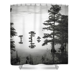 Three Little Brothers Shower Curtain by Eduard Moldoveanu