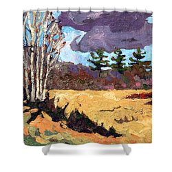 Three Shower Curtain by Phil Chadwick