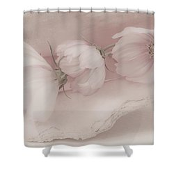 Three Pink Cosmo Flowers Shower Curtain