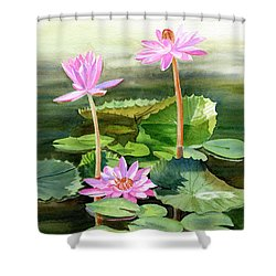 Three Pink Water Lilies With Pads Shower Curtain