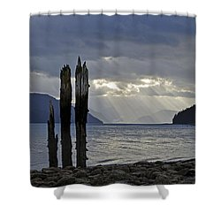 Three Remain Shower Curtain