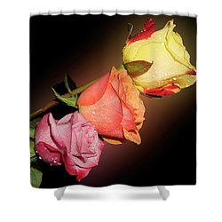 Shower Curtain featuring the photograph Three Roses by Elvira Ladocki