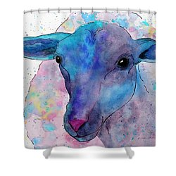 Three Sheep,  3 Of 3 Shower Curtain
