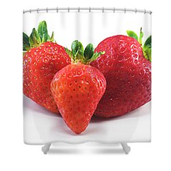 Three Strawberries Shower Curtain