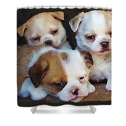 Three Sweeties Shower Curtain