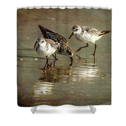 Three Together Shower Curtain by Marvin Spates