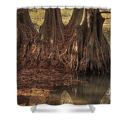Shower Curtain featuring the photograph Three Trees In Lake Murray by Tamyra Ayles