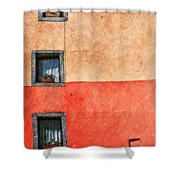 Three Vertical Windows Shower Curtain by Silvia Ganora