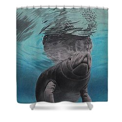 Three Worlds II Shower Curtain