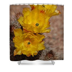 Shower Curtain featuring the photograph Three Yellow Cactus Flowers by Frank Stallone