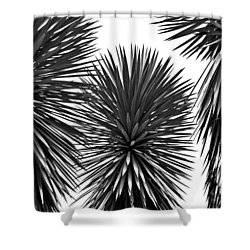 Three Yuccas Shower Curtain by John Bartosik