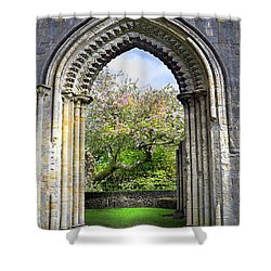 Threshold Of Avalon Shower Curtain