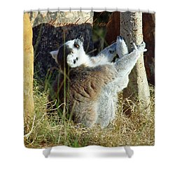 Through Christ Shower Curtain