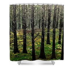 Through It All Shower Curtain