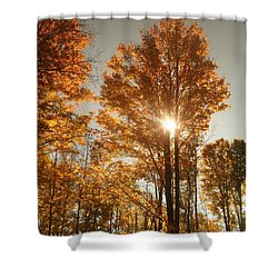 Through Sun Glasses Shower Curtain