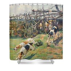 Through The Fence Shower Curtain by Arthur Charles Dodd