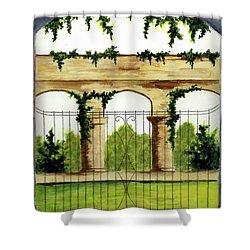 Through The Gates Shower Curtain by Michael Vigliotti
