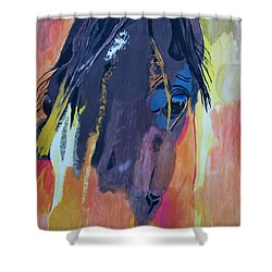 Through The Horse's Eyes Shower Curtain