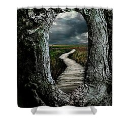 Through The Knot Hole Shower Curtain by Rick Mosher