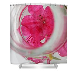 Through The Looking Glass Shower Curtain by Amanda Barcon