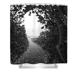 Through The Looking Glass Shower Curtain by Rob Hans