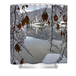 Shower Curtain featuring the photograph Through The Snow Trees by Ian Middleton
