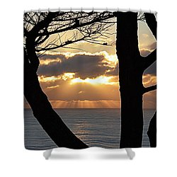 Shower Curtain featuring the photograph Through The Trees by AJ Schibig