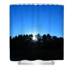 Through The Trees Brightly Shower Curtain