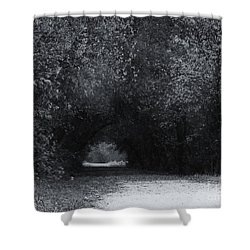 Shower Curtain featuring the photograph Through The Trees by J L Zarek