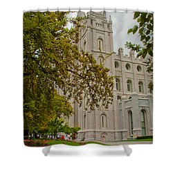 Through The Trees Shower Curtain by La Rae  Roberts