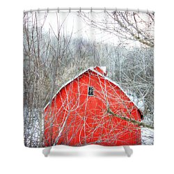 Through The Woods Shower Curtain by Julie Hamilton