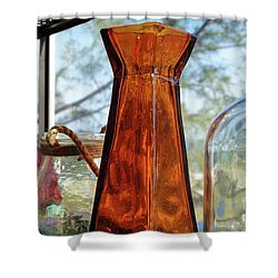 Thru The Looking Glass 1 Shower Curtain by Megan Cohen