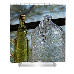 Thru The Looking Glass 2 Shower Curtain by Megan Cohen