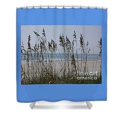 Thru The Sea Oats Shower Curtain by Barb Montanye Meseroll