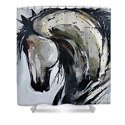 Thunder And Lightning Shower Curtain