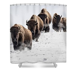 Thunderbeast Shower Curtain by Jack Bell